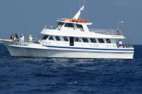 迈阿密出发1日游:MI-T-7189