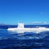 檀香山出发游船观光1日游:HO-T-10494