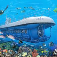 夏威夷大岛出发游船观光1日游:HO-T-1200