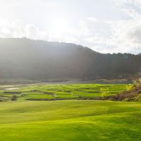 檀香山出发高尔夫球场1日游:HO-T-3101