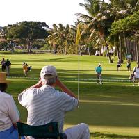 檀香山出发高尔夫球场1日游:HO-T-3114