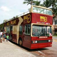 迈阿密出发游船观光1日游:MI-T-1235