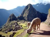 利马出发舒适小团、游船观光、秘鲁8日游:LIM8-11315