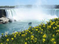 波士顿出发尼亚加拉大瀑布、舒适小团6日游:BO6-2624