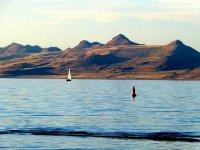 拉斯维加斯出发大峡谷、黄石公园、羚羊谷11日游:LV11-9597